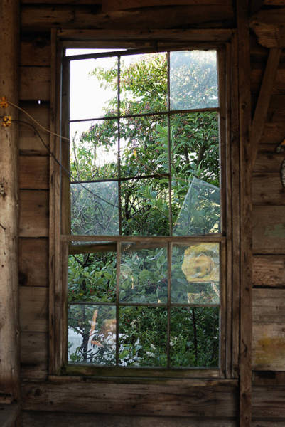 Garage Photograph - Old Garage Window by Susan Capuano