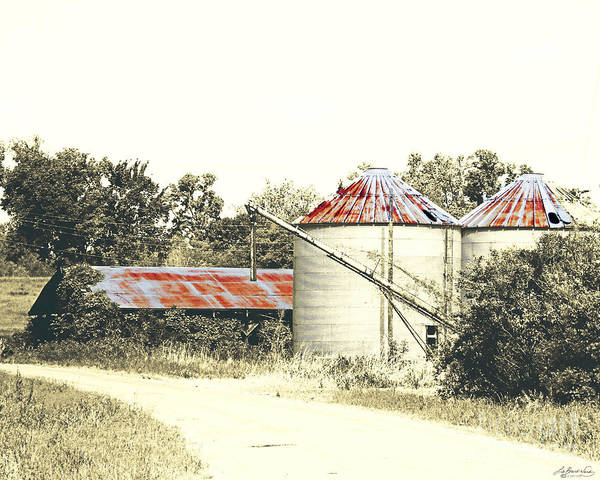 Photograph - Old Hwy 61 Ms Levee Silos by Lizi Beard-Ward