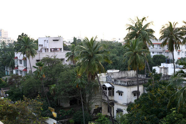 Photograph - Old Modern Chennai by Emery Graham