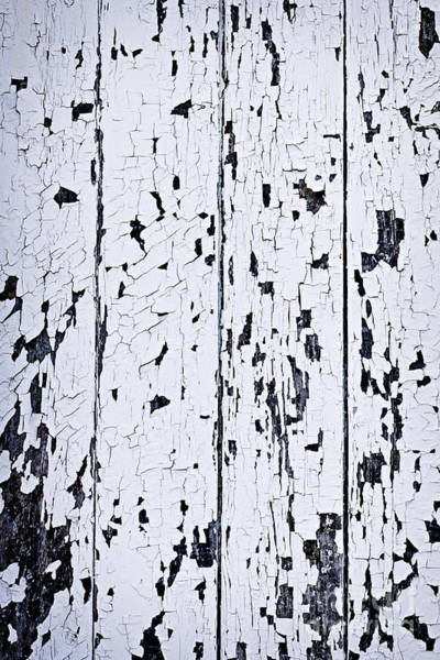 Peeling Paint Wall Art - Photograph - Old Painted Wood Abstract by Elena Elisseeva