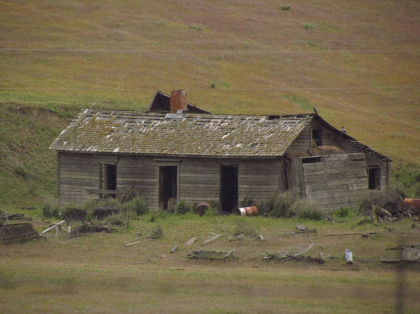 Photograph - Old Palouse Homestead by Tony and Kristi Middleton