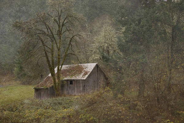 Photograph - Old Shed by Ramona Murdock