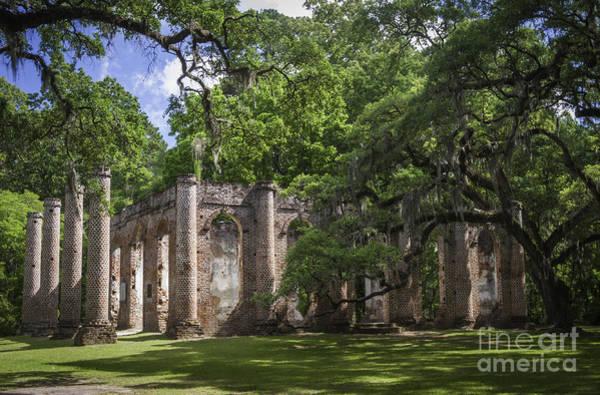 Photograph - Old Sheldon Church Vi by David Waldrop