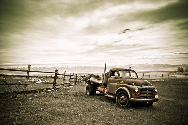 Photograph - Old Timer by Marilyn Hunt