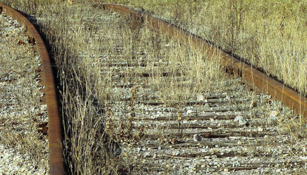 Photograph - Old Train Tracks No.2 by Ms Judi