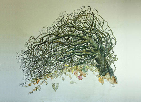 Painting - Old Tree by Brandy Beverly