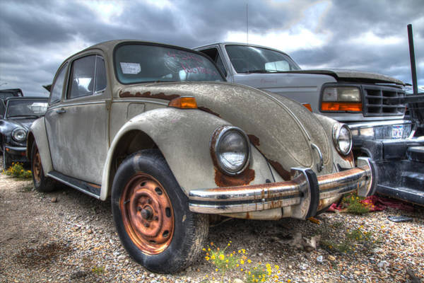 Photograph - Old Vw Beetle by Jonathan Davison