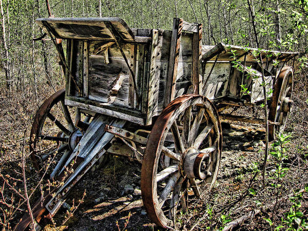 Photograph - Old Wagon by Fred Denner