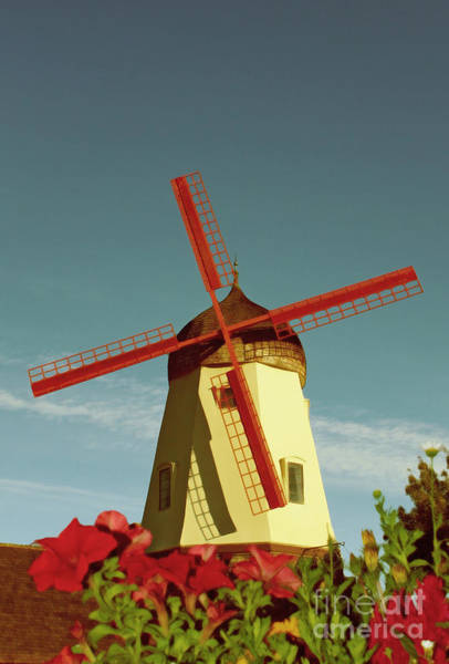 Solvang Photograph - Old Windmill  by Paul Topp