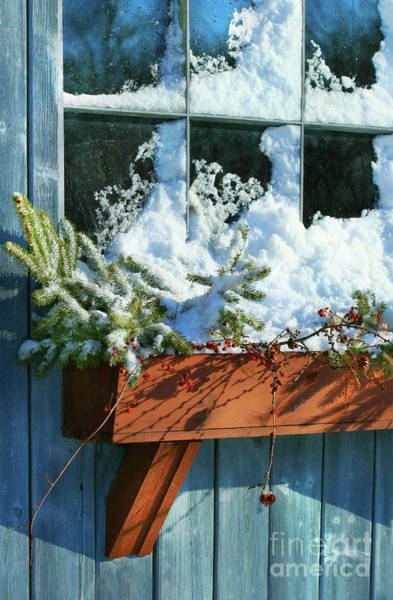 Wall Art - Photograph - Old Window In Winter by Sandra Cunningham