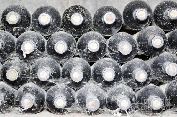 Antic Photograph - Old Wine Bottles by Mats Silvan