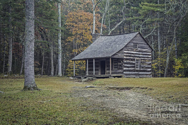 John Oliver Cabin Photograph - Oliver Cabin Cades Cove by David Waldrop
