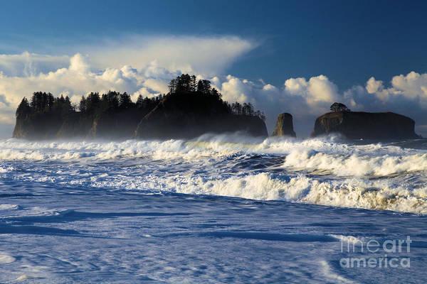 Photograph - Olympic Ocean Swirls by Adam Jewell