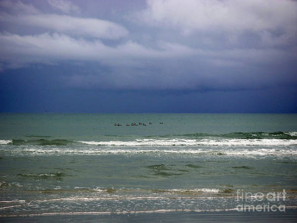 Wall Art - Photograph - On A Stormy Afternoon by Lucyna A M Green