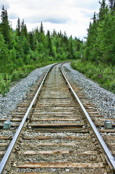 Photograph - On The Rails by Heather Applegate