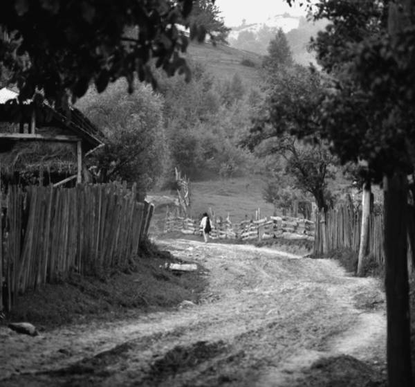 Photograph - On The Village Path by Emanuel Tanjala
