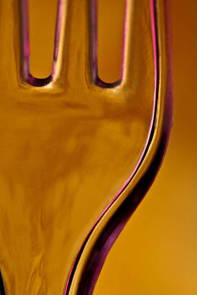 Fork Photograph - Orange Fork With Slash Of Pink by Carol Leigh
