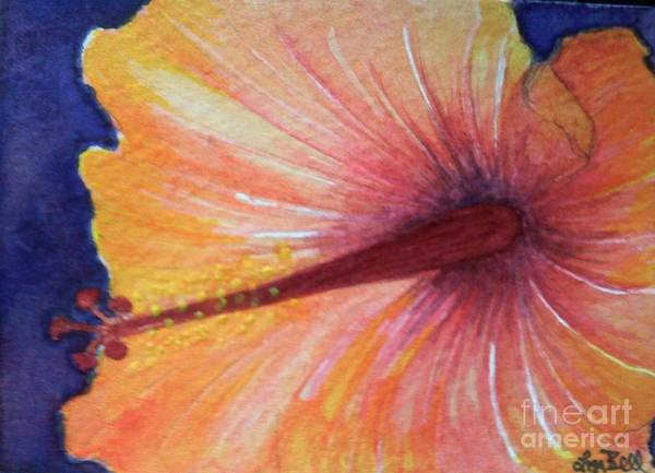 Wall Art - Painting - Orange Hibiscus by Lisa Bell