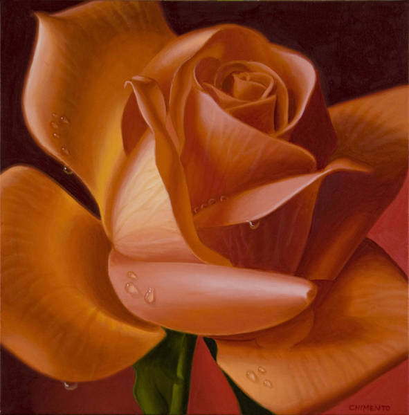Single Rose Painting - Orange Rose With Red Background by Tony Chimento