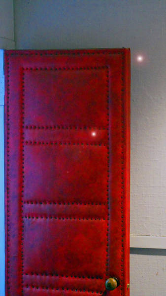 Photograph - Orbs Of The Red Door by Cyryn Fyrcyd