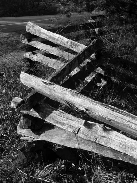 Photograph - Orchardfence by Curtis J Neeley Jr