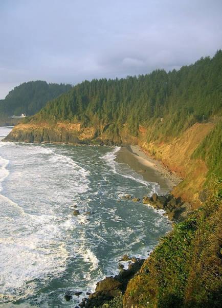 Photograph - Oregon Coastline by Margaret Pitcher
