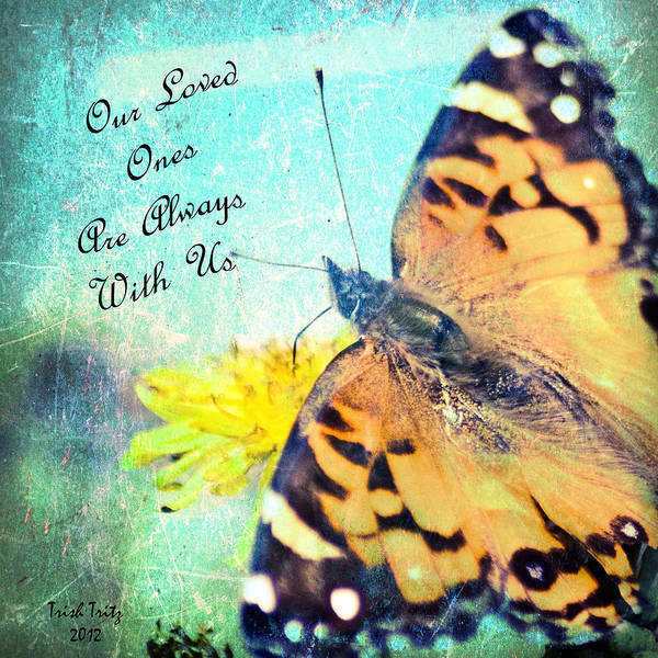 Photograph - Our Loved Ones Are Always With Us by Trish Tritz