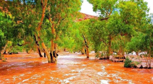 Photograph - Outback Flood by Paul Svensen