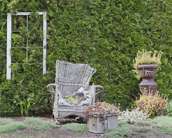 Wall Art - Photograph - Outdoor Furniture Used As Planters by Douglas Orton