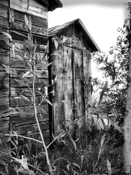 Photograph - Outhouse 3 by Susan Kinney