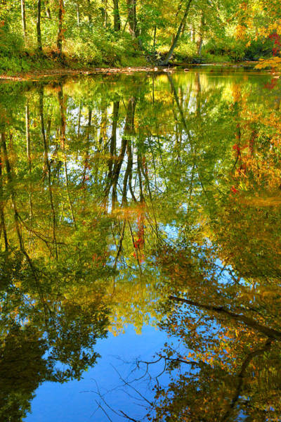 Frederick County Wall Art - Photograph - Owens Creek In Autumn II by Steven Ainsworth