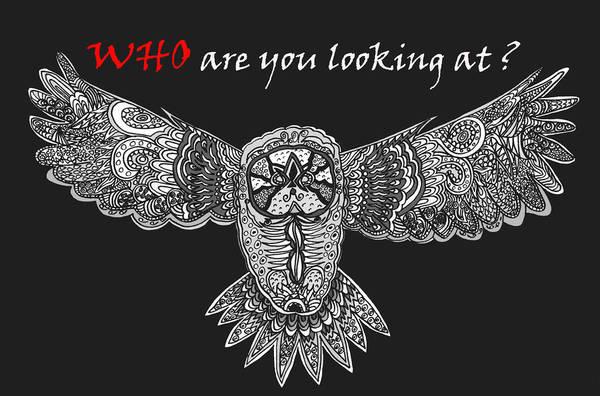 Wall Art - Drawing - Owl In Flight by Karen Elzinga