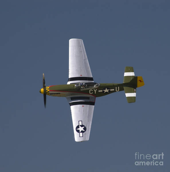 Wall Art - Photograph - P-51 Gunfighter by Tim Mulina