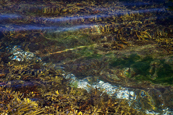Photograph - Pacific Calm 3 by David Kleinsasser
