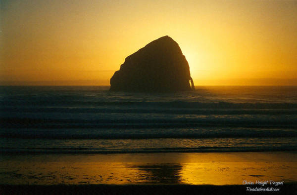Photograph - Pacific City Sunset by Chriss Pagani