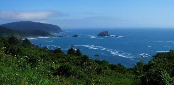 Crescent City Mixed Media - Pacific Highlands by Tatiacha  Bhodsvatan