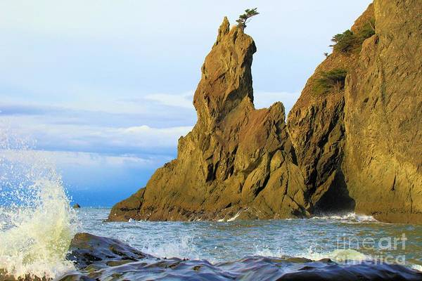 Photograph - Pacific Sea Stacks by Adam Jewell