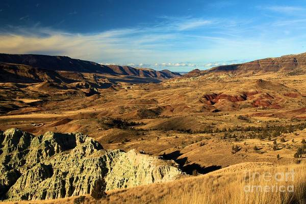 Photograph - Painted Blue Basin by Adam Jewell