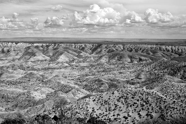 Photograph - Painted Desert In B And W by Melany Sarafis