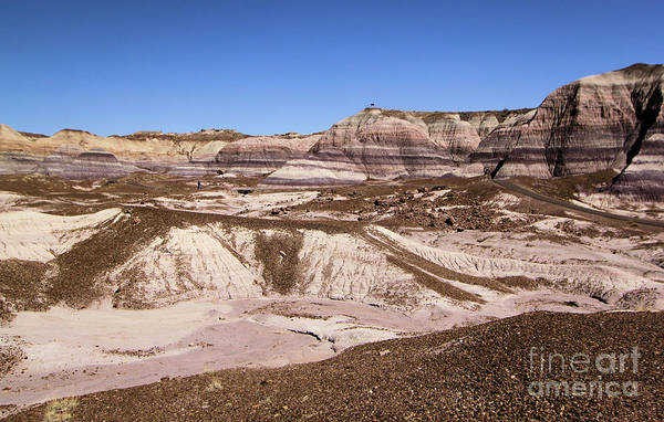 Photograph - Painted Desert Landscape by Adam Jewell