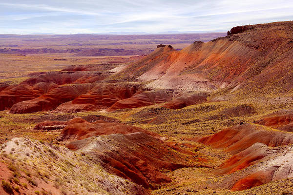 Painted Desert Photograph - Painted Desert by Mike McGlothlen