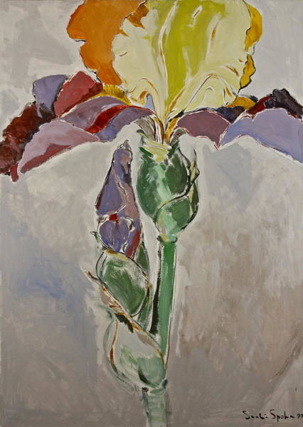Painting - Painted Iris Posthumously Presented Paintings Of Sachi Spohn  by Cliff Spohn