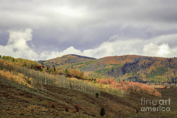 Photograph - Painted Mountain Side by David Waldrop