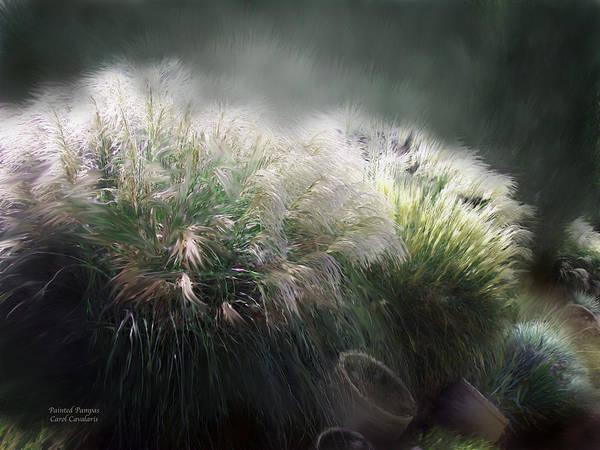 Mixed Media - Painted Pampas by Carol Cavalaris