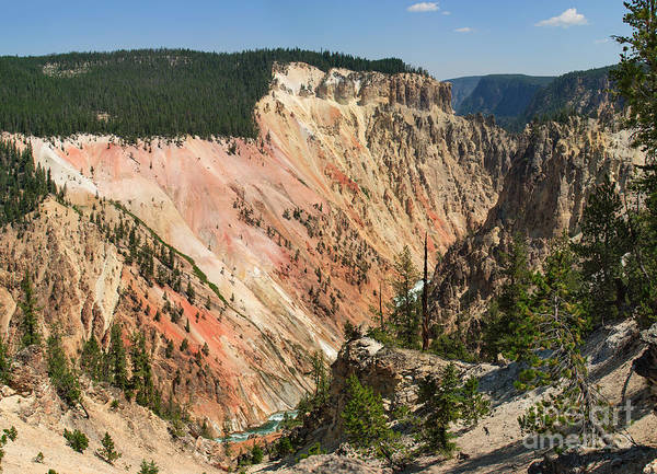 Photograph - Painted Walls -- Grand Canyon Of The Yellowstone by Charles Kozierok