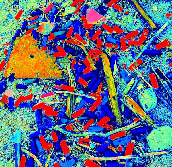 Debris Digital Art - Painting With Debris by Randall Weidner