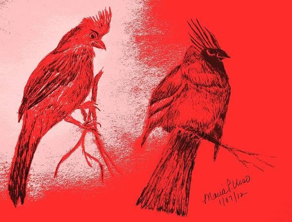 Red Cardinal Drawing - Pair Of Cardinals by Maria Urso