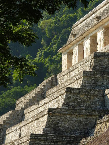 Wall Art - Photograph - Palenque - Temple Of Inscriptions 2 by Craig Johnson