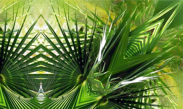 Palm Frond Digital Art - Palm Frond Kaleidoscopic by Francesa Miller