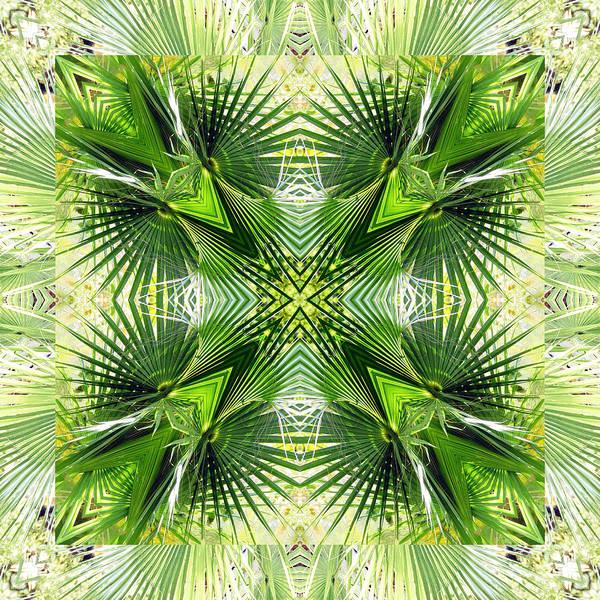 Palm Frond Digital Art - Palm Kaleidoscope 6 by Francesa Miller